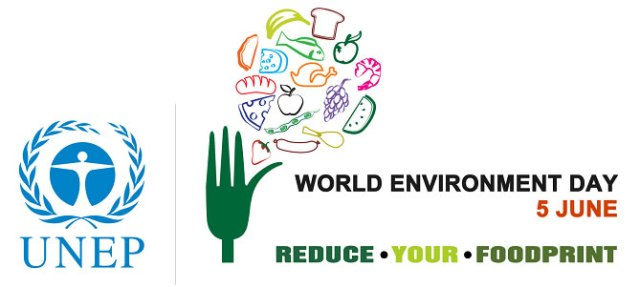 World Environment Day 2013 2